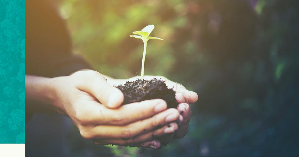7 leis relacionadas ao licenciamento ambiental que você precisa ficar atento!