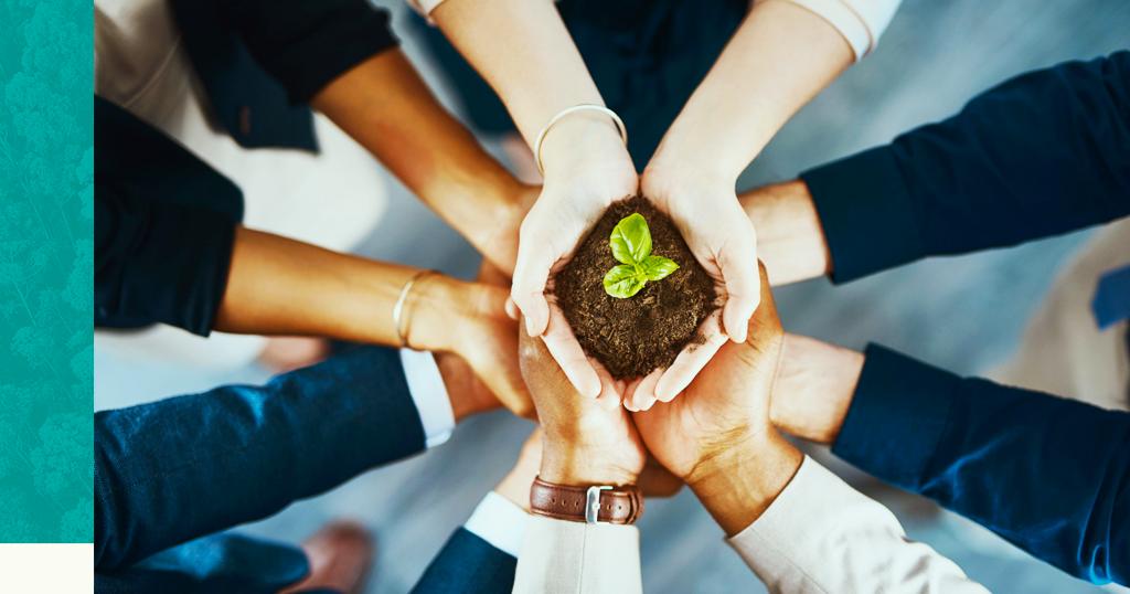 Sustentabilidade empresarial: você sabe como seu empreendimento pode trabalhá-la?