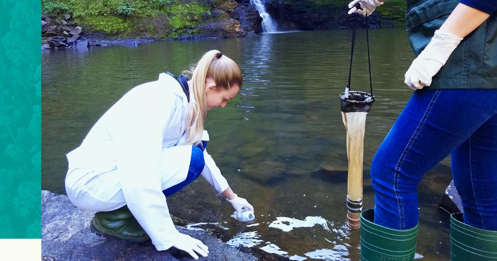 Indicadores ambientais da qualidade da água: saiba quais você precisa ficar atento!