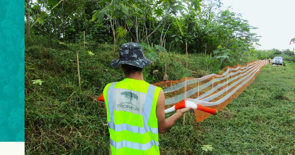 Programa de Recuperação de Áreas Degradadas: entenda como ele funciona e quando é necessário!