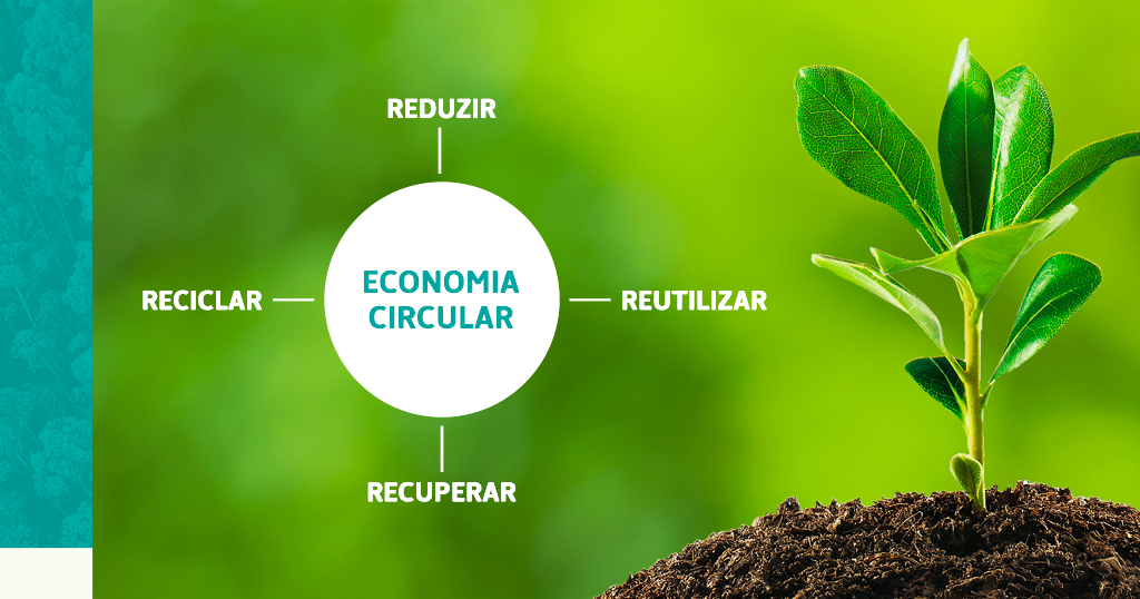 Entenda a importância da Economia Circular nas indústrias