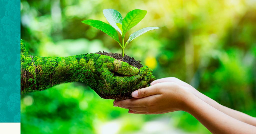 Você sabe o que é o Licenciamento ambiental e os tipos de licenças que existem?